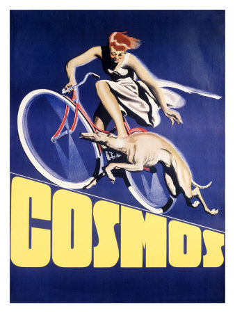 cosmos-greyhound-bicycle